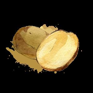ATLPRIM-pomme-de-terre