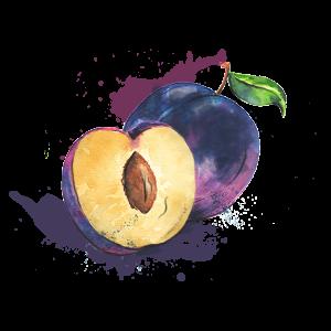 ATLPRIM-prune