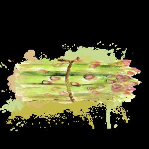 asperge-atlantic-primeurs