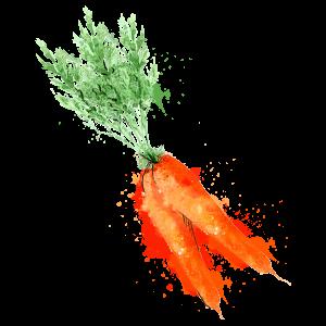 carotte-atlantic primeurs