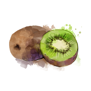 kiwi-atlantic-primeurs