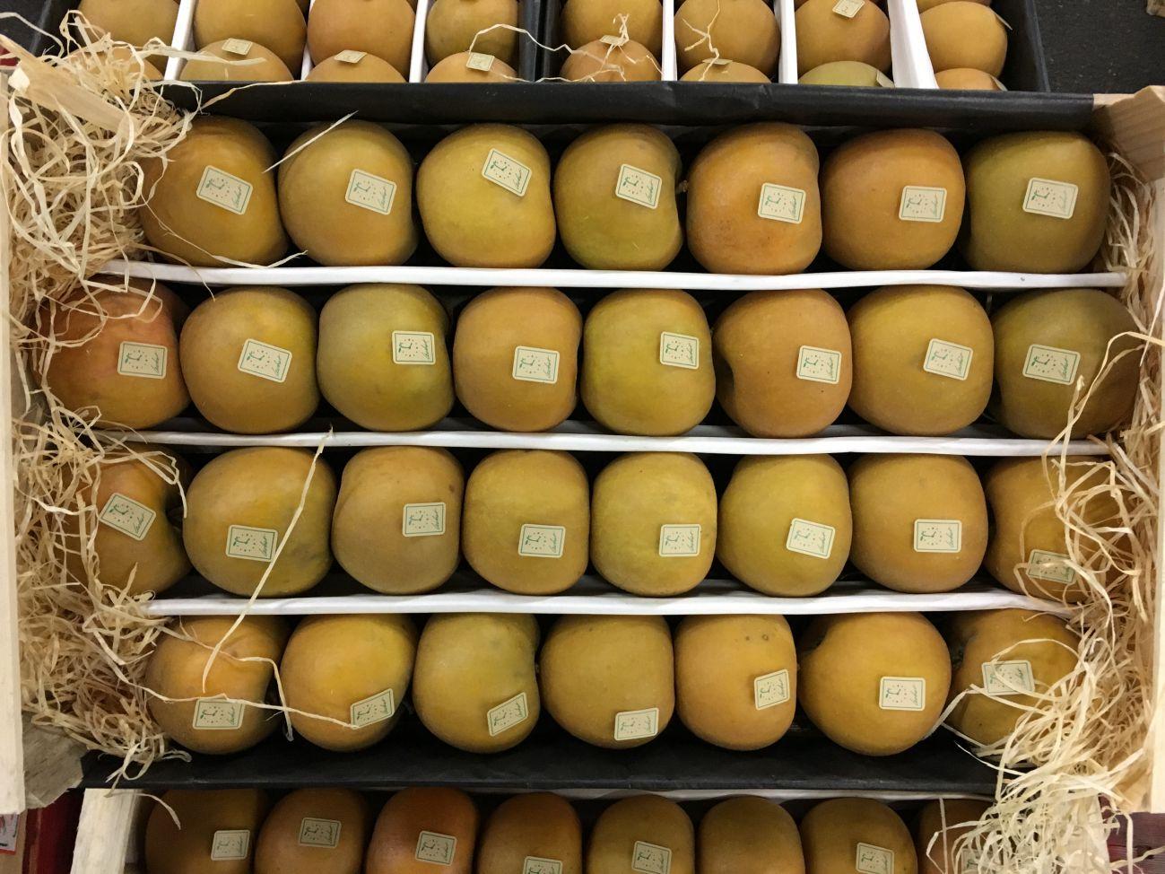 pomme goldrush-atlantic-primeurs