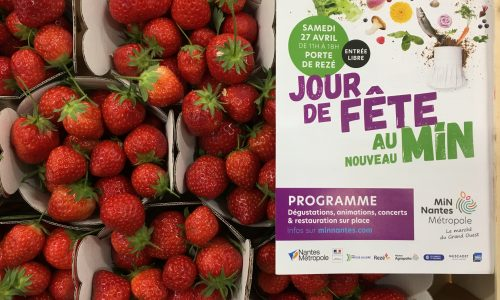 fraise fr anais +pub