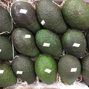 avocat bio-atlantic-primeurs
