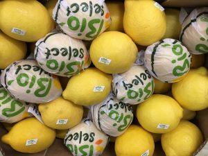 citron jaune bio-atlantic-primeurs