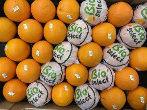 orange bio-atlantic-primeurs
