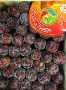 prune grenadine-atlantic-primeurs